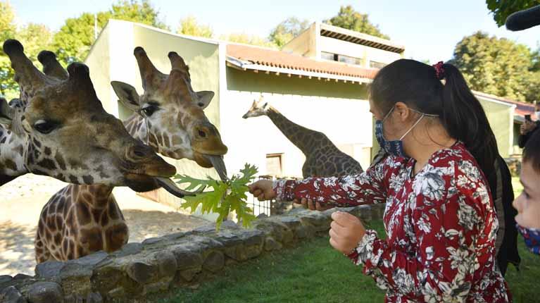 Bursa Hayvanat Bahçesi'nin özel konukları
